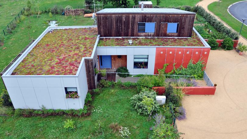 Toiture v g tale elle apporte un vrai plus d un point de for Maison avec toit vegetal
